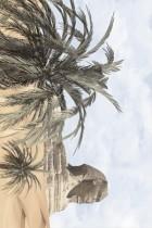 Плитка Luxor 091311